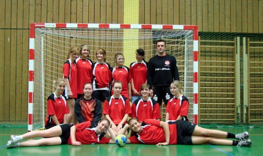 wB-Jugend Handball 2ß11/2012